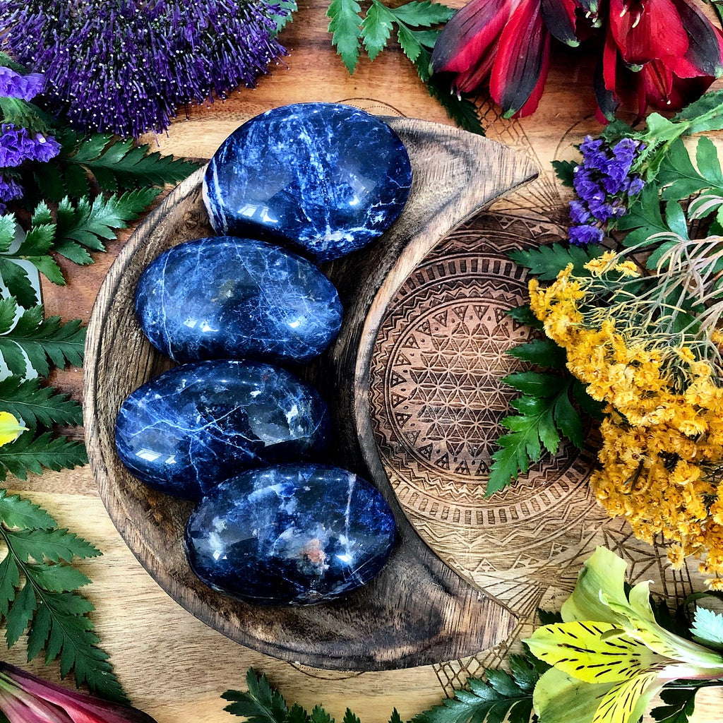 Sodalite Palm Stone | Small