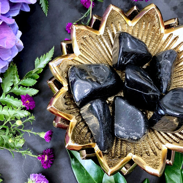 Black Tourmaline Tumbles ~ Large