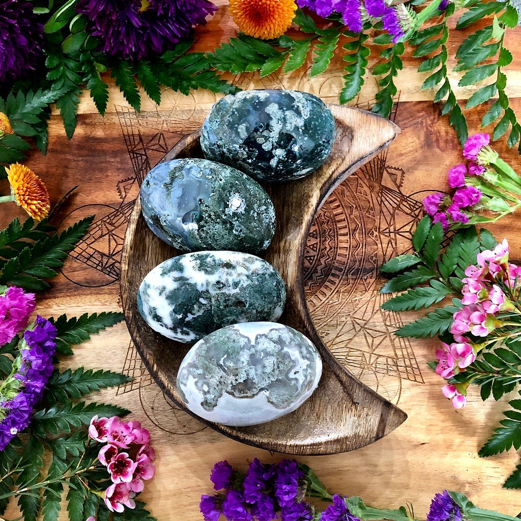 Moss Agate Palm Stone | Medium