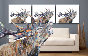 stag print, canvas print, stag