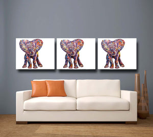 Baby Elephant 'Caper' Giclee Canvas Print