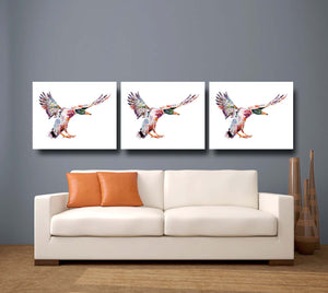 Duck 'Daividh' Giclee Canvas Print
