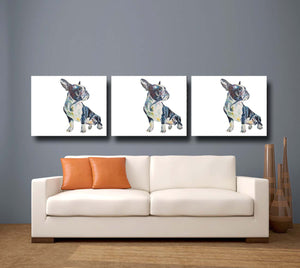 Boston Terrier 'Fernand' Giclee Canvas Print