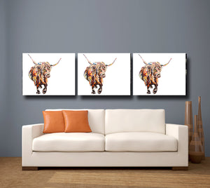 Highland Cow 'Fraser's Cow' Giclee Canvas Print
