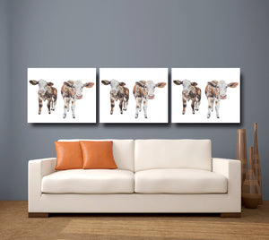 Inquisitive Cows 'Iris & Izzy' Giclee Canvas Print