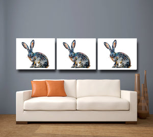 Hare 'Jack' Giclee Canvas Print
