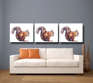 red squirrel, red squirrel print, red squirrel gift idea,