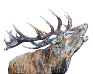 Bellowing Stag 'Murdo' Giclee Print