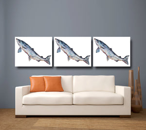 Leaping Salmon 'Mr Teviot' Giclee Canvas Print