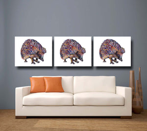 Hedgehog 'Sean' Giclee Canvas Print