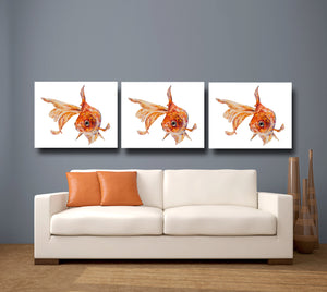 angel fish, fish, gold fish print canvas