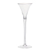 Classics Long Stem Champagne Flute (1 Glass) with Free Microfiber Cleaning Cloth