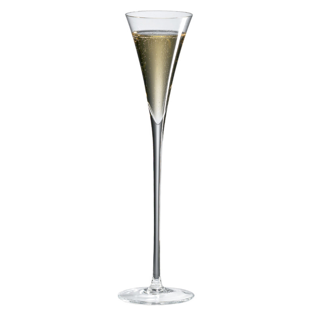 Classics Long Stem Champagne Flute (Set of 2) with Free Microfiber Cleaning Cloth