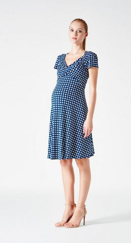 Leota Sweetheart Dress in Gingham