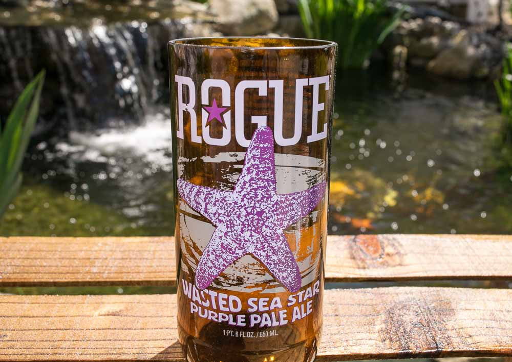 Rogue Ales Brewing Wasted Sea Start Purple Pale Ale Recycled Beer Bottle Drinking Glass