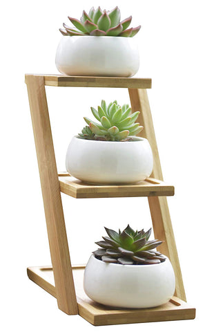 Jusalpha 3.2 Inches Ceramic Modern Decorative Small Round Succulent Plant Pot, Planter for Succulent Plants, Small Cactus and Herbs with Bamboo Tray for Room Decor- Set of 3 (Planter 01 White)