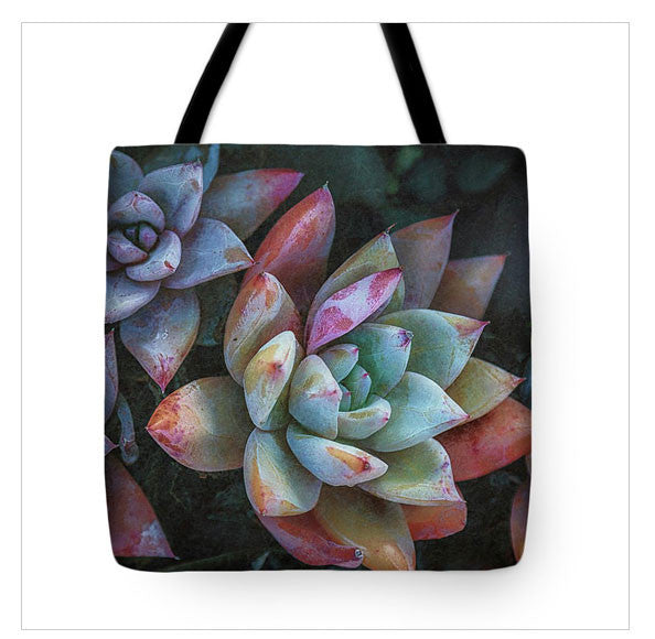 https://fineartamerica.com/products/color-book-succulents-jade-moon-tote-bag.html