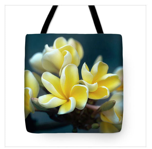 https://jade-moon.pixels.com/products/plumerias-out-of-the-blue-jade-moon-tote-bag.html