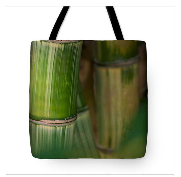 https://fineartamerica.com/featured/bamboo-forest-jade-moon-.html?product=tote-bag
