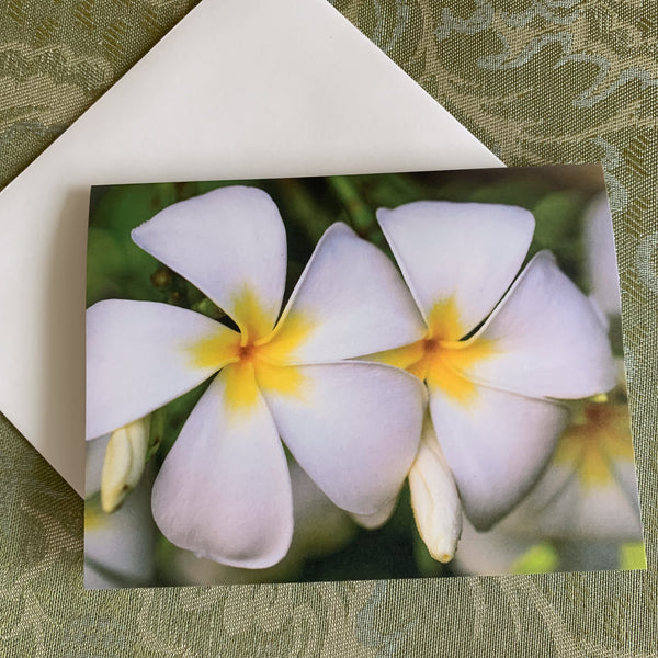 https://jademoonphotography.com/products/laukahi-plumerias-note-cards