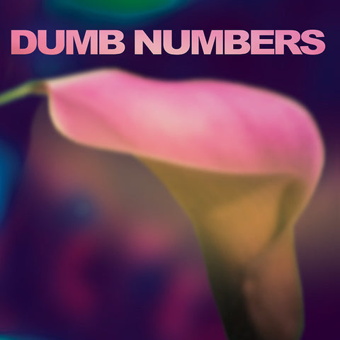 Dumb Numbers - Dumb Numbers - Joyful Noise Recordings - 1