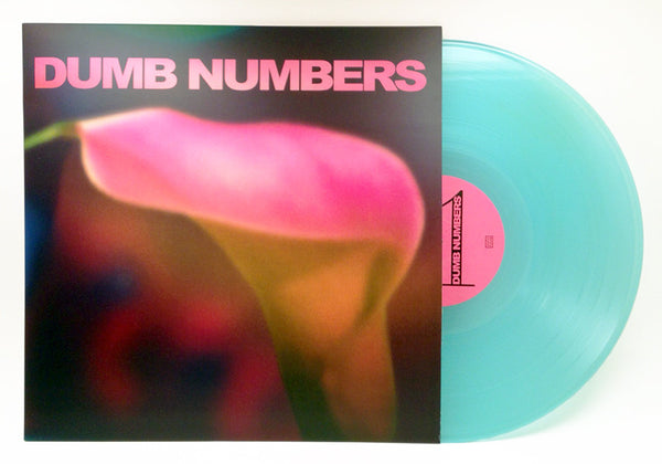 Dumb Numbers - Dumb Numbers - Joyful Noise Recordings - 2
