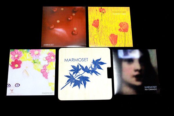 Vinyl Box Set - Marmoset - Joyful Noise Recordings - 3