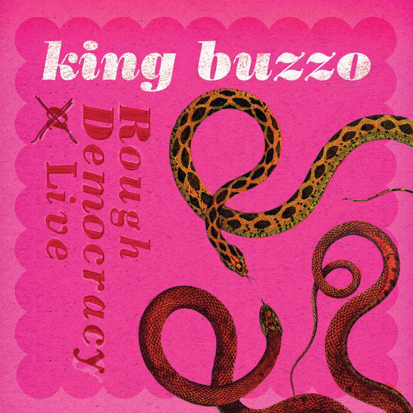 Rough Democracy Live - King Buzzo - Joyful Noise Recordings