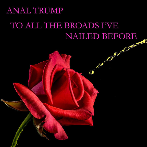 Anal Trump - To All The Broads I've Nailed Before
