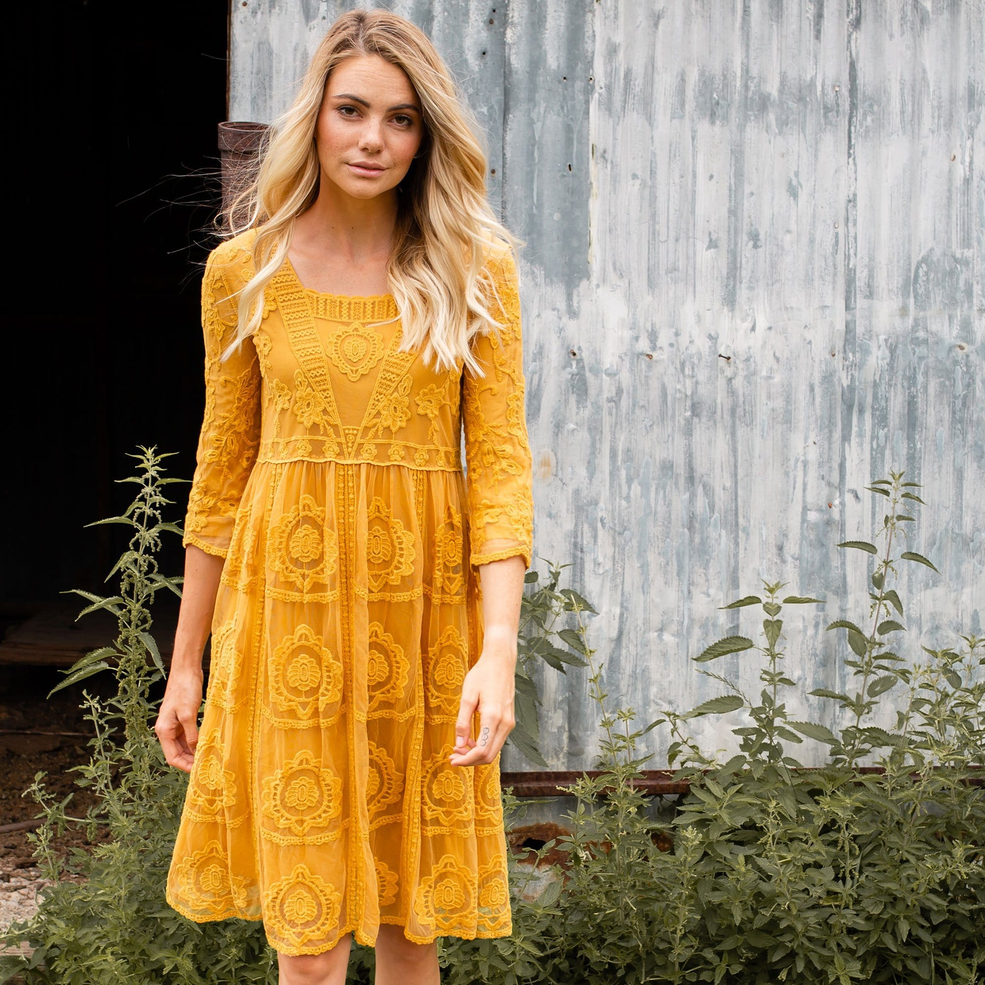 Scalloped Embroidered Dress