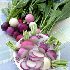 Radishes on table, some cut in pieces in a bowl