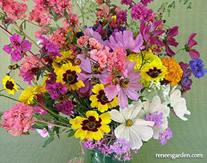 Endless Bouquets Cut Flower Garden
