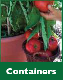 Containers Gardening Resources icon