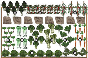 Kitchen Garden Design image of herb and flower garden design Renees Kitchen Garden Designs