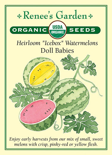 Watermelon Garden Images