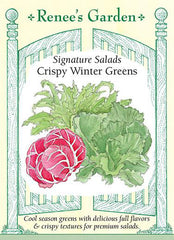 Crispy Winter Greens