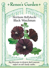 Black Watchman