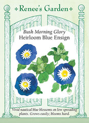 Heirloom Blue Ensign