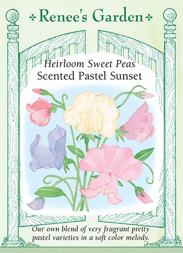Scented Pastel Sunset
