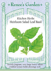 Heirloom Salad Leaf Basil