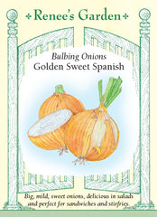 Golden Sweet Spanish
