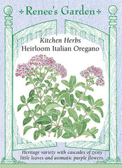 Heirloom Italian Oregano