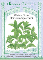 Heirloom Spearmint