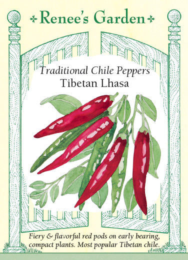 Orange & Red Suave' Mild Habanero Chiles | Renee's Garden Seeds