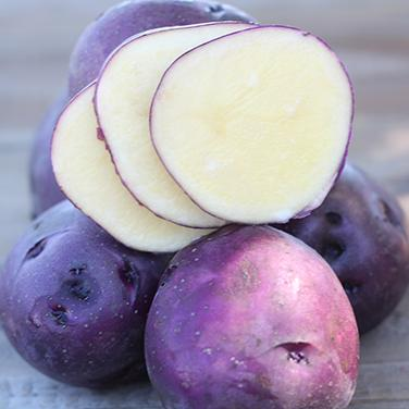 Huckleberry Gold: The First Low Glycemic Potato!