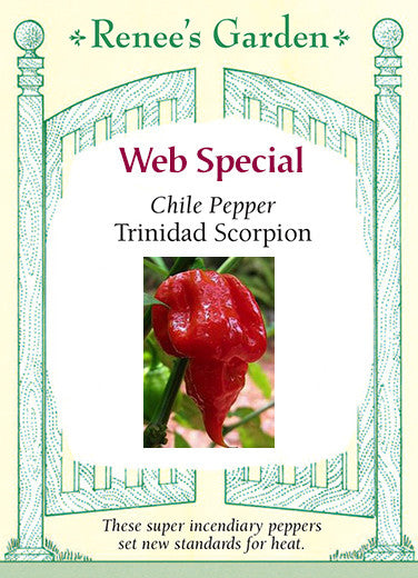 7af48d4a846a Trinidad Scorpion  Web Special Chile Peppers