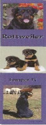 Dog Photos ROTTWEILER Pet Laminated Paper Bookmark