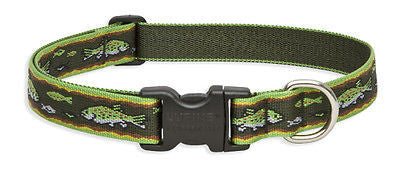 "Lupine 1"" wide BROOK TROUT Adjustable Nylon Dog Collar size 16-28"""