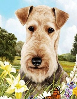 Outdoor Small Flag Airedale Terrier Dog Summer Flowers Garden Flag