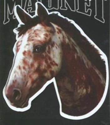CLEARANCE...Die-cut APPALOOSA Horse Head Flexible Vinyl Car Magnet